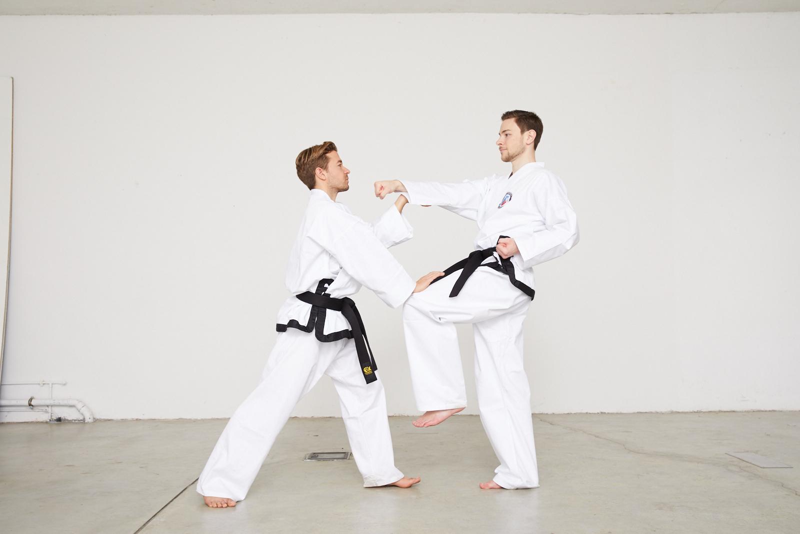 Taekwondo Ilbo Taeryon