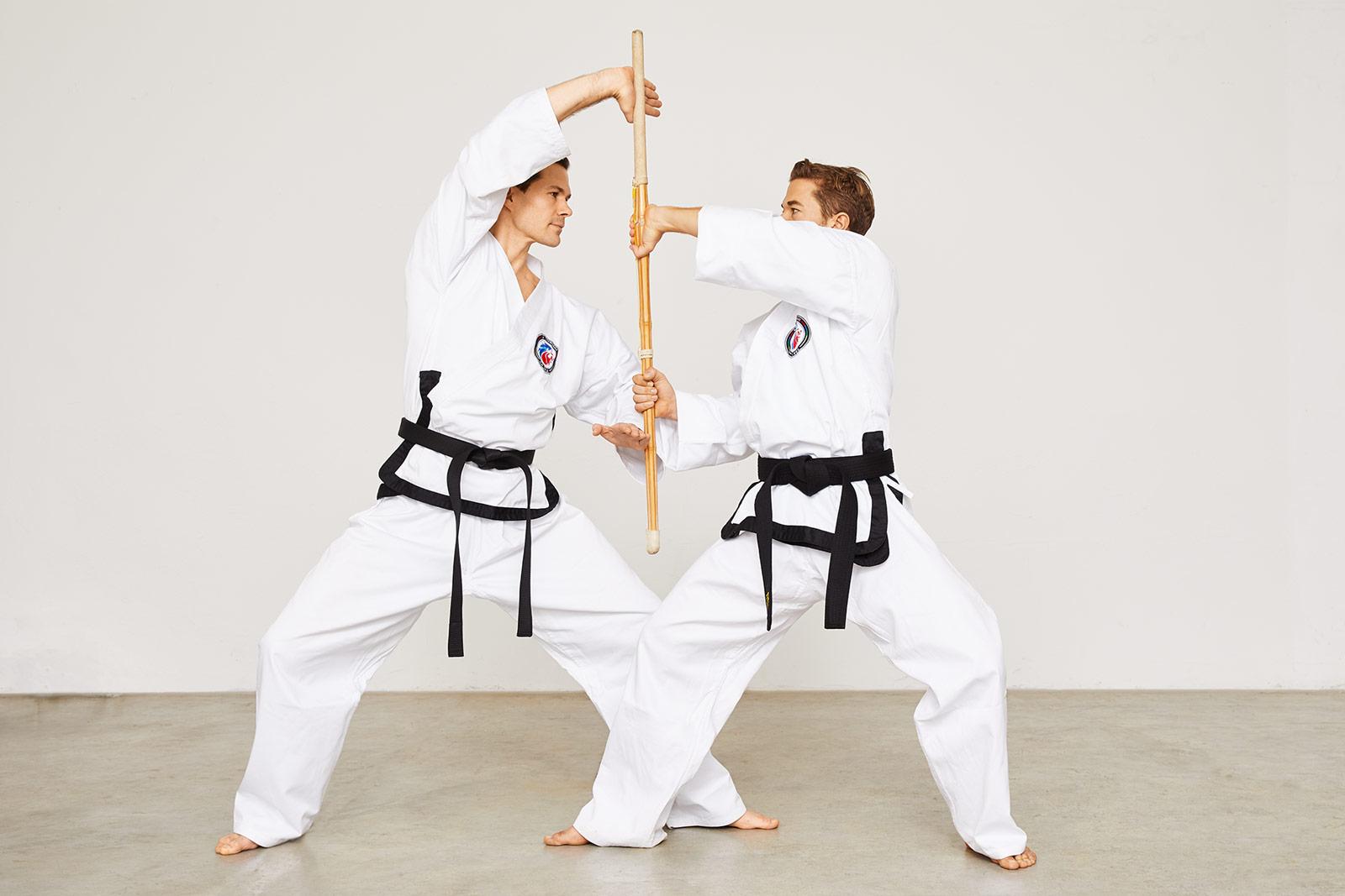 Taekwondo Stock- und Messertechnik